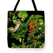 Humming Bird Honeysuckle Tote Bag