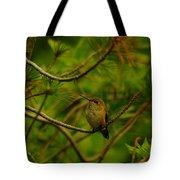 Humming Birds Perched  Tote Bag