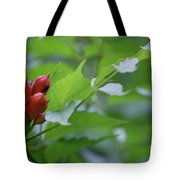 Humming Buds By Jammer Tote Bag