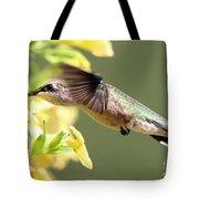 Hummingbird 3725 Tote Bag