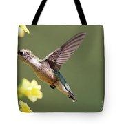 Hummingbird 3731 Tote Bag
