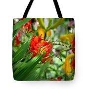 Hummingbird Among The Lucifer Tote Bag