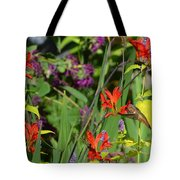 Hummingbird And Crocosmia Lucifer Tote Bag