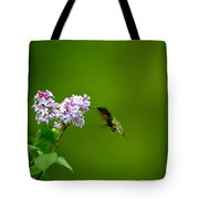 Hummingbird And Lilac Tote Bag