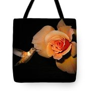 Hummingbird And Orange Rose Tote Bag