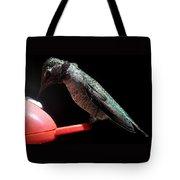 Hummingbird Anna's Eating On Perch Tote Bag