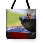 Hummingbird Bath Tote Bag