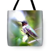 Hummingbird - Beautiful Tote Bag