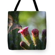 Hummingbird Breakfast Southwest Style  Tote Bag