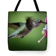 Hummingbird Carbs Tote Bag