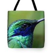 Hummingbird Closeup Tote Bag