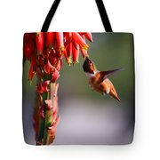 Hummingbird Feast  Tote Bag