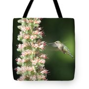 Hummingbird In Burbank Garden Tote Bag