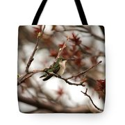 Hummingbird In Spring Tote Bag