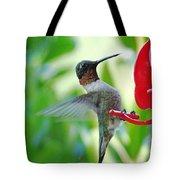 Hummingbird Male Ruby Throated  Tote Bag