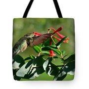 Hummingbird Morning Tote Bag