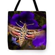 Hummingbird Moth   #8612 Tote Bag