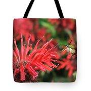 Hummingbird Moth Feeding On Red Flower Tote Bag