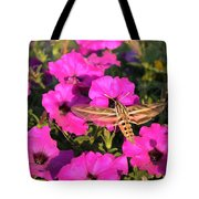 Hummingbird Moth Tote Bag