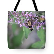 Hummingbird Moths Tote Bag