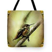 Hummingbird Noveau Tote Bag