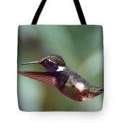 Hummingbird Of Ecuador Tote Bag