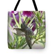 Hummingbird On A Desert Willow Tote Bag