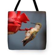 Hummingbird On Feeder Tote Bag