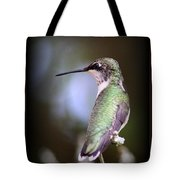 Hummingbird Photo - Side View Tote Bag