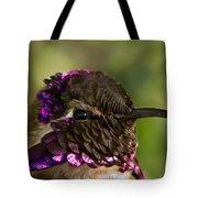Hummingbird Portrait Tote Bag