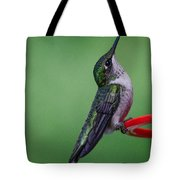 Hummingbird Profile Tote Bag