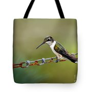 Hummingbird Resting On A Chain Tote Bag