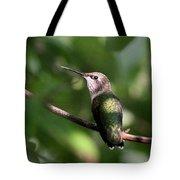 Hummingbird - Ruby-throated Hummingbird - Detail Tote Bag