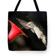 Hummingbird Sigh Tote Bag