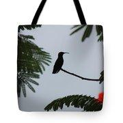 Hummingbird Silhouette Tote Bag
