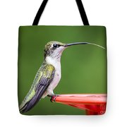 Hummingbird Sticky Her Tongue Out Tote Bag