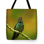 Hummingbird With A Lilac Crown Tote Bag