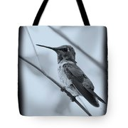 Hummingbird With Old-fashioned Frame 1 Tote Bag