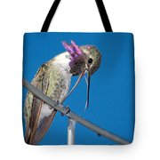 Hummingbird Yawn With Tongue Tote Bag