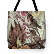 Hummingbirds And Orchids Tote Bag