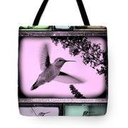 Hummingbirds In Old Frames Collage Tote Bag