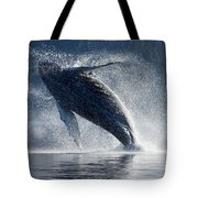 Humpback Whale Breaching In The Waters Tote Bag by John Hyde