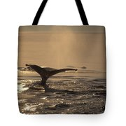 Humpback Whale Feeding Tote Bag