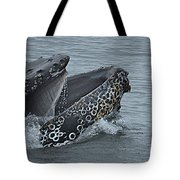 Humpback Whale  Lunge Feeding 2013 In Monterey Bay Tote Bag