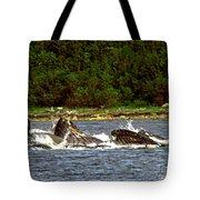 Humpback Whales Feeding Tote Bag