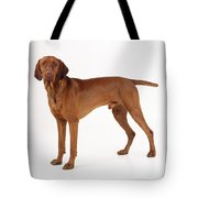 Hungarian Vizsla Dog Tote Bag