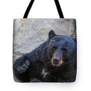 Hungry Bear Tote Bag