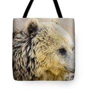 Hungry Bear Tote Bag