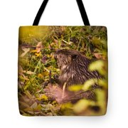 Hungry Beaver Tote Bag