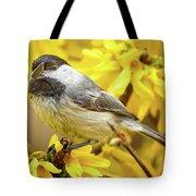 Hungry Bird Tote Bag